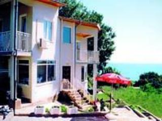 Relaxing villa close to the beach - Varna vacation rentals