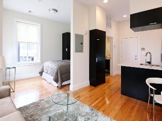 South End Boston Furnished Studio - 784 Tremont Street Unit 2 - Boston vacation rentals