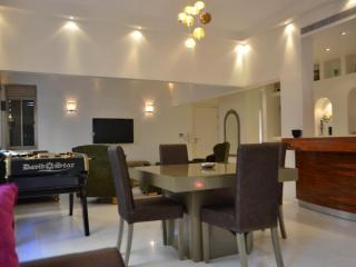 Holiday apartment rental Tel Aviv luxury condo - Tel Aviv vacation rentals
