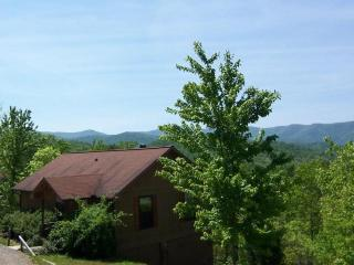 Laurel Mountain Cabins - the Dogwood  Cabin -GREAT LONG RANGE VIEWS ! - Hiawassee vacation rentals