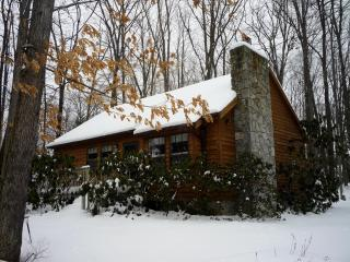 Red Run Cabin - Western Maryland - Deep Creek Lake vacation rentals