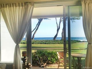 Whale Watchers ** OCEAN FRONT** - Kapaa vacation rentals