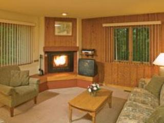 LIVING ROOM / FLAT SCREEN TV/FIREPLACE - Villa/TOWNHOME/avaliable weeks of 5-3-15 & 5-18-15 - Shawnee on Delaware - rentals