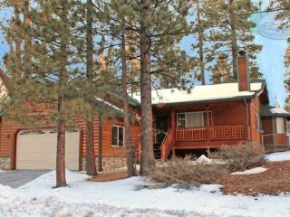 Pine Retreat Cabin an affordable Big Bear luxury Vacation Cabin in a quiet area yet minutes from Bear Mountain Resorts and all a - Big Bear Area vacation rentals