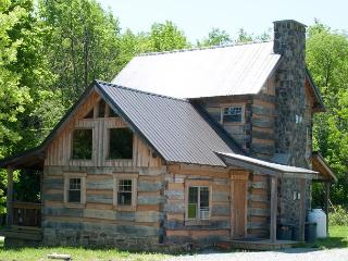 Orndorff Cabin- AUTHENTIC, Primitive & cozy CABIN in the MOUNTAINS OF PA!! - Allegheny Mountains vacation rentals