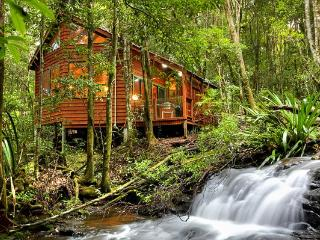 The Mouses House Rainforest Retreat - Springbrook vacation rentals