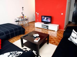 Beautiful studio apartment for rent - Sarajevo vacation rentals