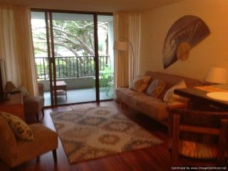 Oceanfront condo--swim with the honu(sea turtles)! - Hilo District vacation rentals