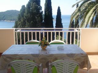 APARTMENT SEA VIEW DUBROVNIK - Dubrovnik vacation rentals