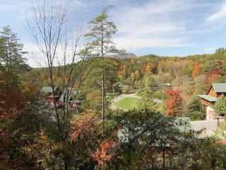 Sheer Bliss - Sevierville vacation rentals