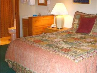Perfect Condo for a Couple - Quality Accommodations (1287) - Crested Butte vacation rentals