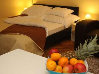 Queen Helen - home away from home - Zagreb vacation rentals