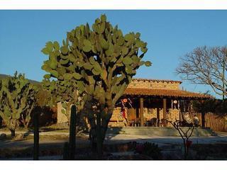 B & B Rancho Pitaya - Oaxaca vacation rentals