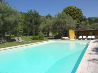 Gorgeous 5 Bedroom Villa - Interior Designer's Property-30 mins from Cannes - Alpes Maritimes vacation rentals
