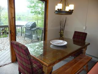 Oktoberfest Dates Avail - 1 mi from mt - views - Hunter vacation rentals