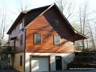 Large 6 Bedroom Family Cabin*Pool Table*Ping Pong - Valle Crucis vacation rentals
