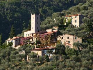 Studiolo at Peralta - Camaiore vacation rentals