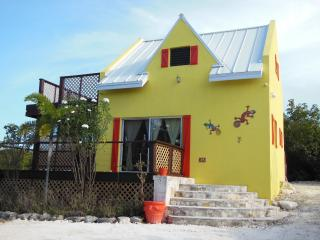 That Lovely Gecko House (GRACE BAY)-Turks & Caicos - North Caicos vacation rentals