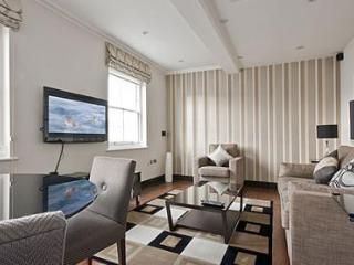 Deluxe 2Bed/2Bath Luxury Apartment in Kensington - London vacation rentals
