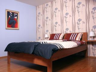Apartment in Zlin - Zlin vacation rentals