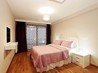 2BDR DUPLEX RESIDENCE TAKSIM - Istanbul vacation rentals