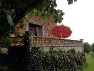 Le Figuier - Haute-Garonne vacation rentals