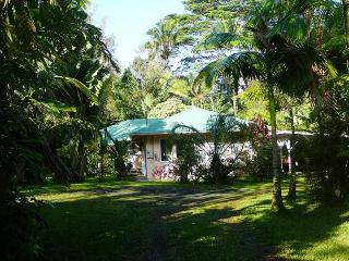 Hale Lezarde: Pahoa, Puna District, Hawai'i - Pahoa vacation rentals