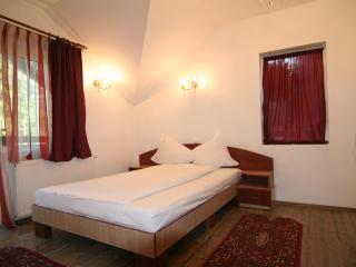 Villa Balbi - Romania vacation rentals