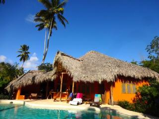 Sun Sale! 1 min walk from the beach - Ballenas - Las Terrenas vacation rentals