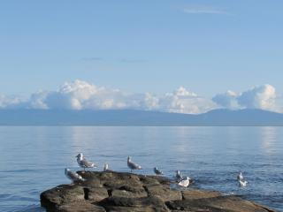 VANCOUVER ISLAND - ELES ESCAPE B and B by the SEA - Lantzville vacation rentals