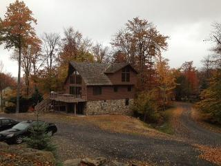 It is a short and easy walk to the slopes from this lovely mountain chalet. - Davis vacation rentals