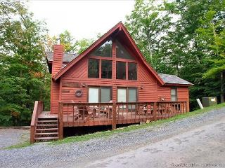 Fantastic location for skiers, bikers and hikers!! - Canaan Valley vacation rentals
