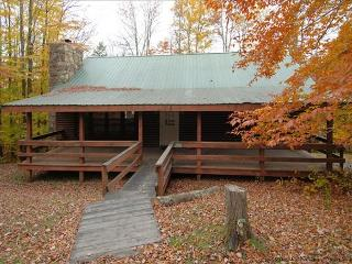Lovely mountain home offers field, stream and AFFORDABLE lodging. - Canaan Valley vacation rentals