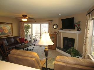 View, 2 Screened Porches, Recliners, Golf, Luxury - Kimberling City vacation rentals