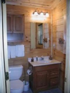 Cabin #9 - Bear Den - Image 1 - Bryson City - rentals