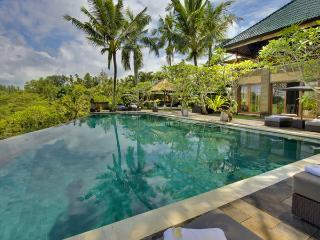 Bukit Naga Villa - Seminyak vacation rentals