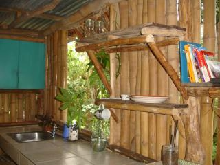 Bush Bar: cabin No 1. Frangipani - Kingstown vacation rentals