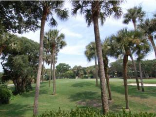 Turtle Point 4960 - Kiawah Island vacation rentals