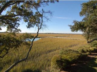Shelter Cove 1715 - Seabrook Island vacation rentals