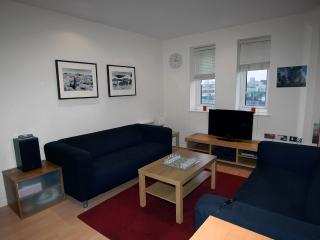 Vacation Rental in London with Gym, Sauna, and Steam Room - London vacation rentals