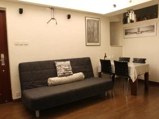 Country-Style Apartment Near Times Sq. in Wan Chai, Hong Kong - Hong Kong vacation rentals