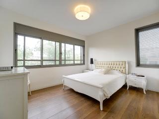 2br Deluxe Bazel Tel Aviv apartment for rent - Tel Aviv vacation rentals