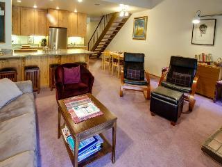 Vintage Tahoe home w/pool, hot tub, tennis, bocce, etc! - Carnelian Bay vacation rentals