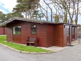 PRIMROSE LODGE, detached ground floor, woodland setting in Saltburn Ref 13015 - Skinningrove vacation rentals