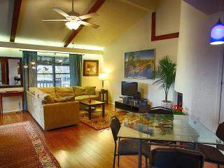 Barton Hills Abode 2/2 Sleeps 6 - Austin vacation rentals