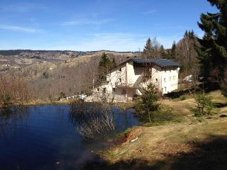Le Panoramic - Gerardmer vacation rentals