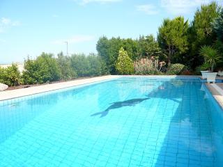 Sea Views Garden Studio - Saronic Gulf Islands vacation rentals