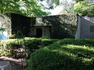Modern Zilker: lease two months, July and August - Austin vacation rentals