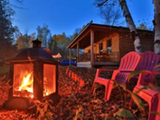 Sand beach cottage - Killaloe vacation rentals