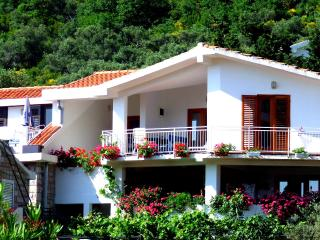 Nr Lux-Two-Bedroom Apartment with Terrace - Montenegro vacation rentals